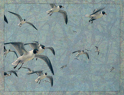 Beach Drawing - Gulls by James W Johnson