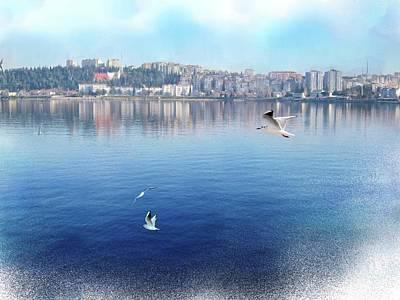 Digital Art - Gulls On The Aegean by Gina Harrison
