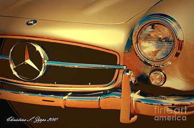 Gullwing IIi Art Print