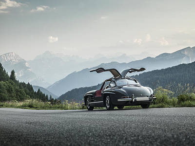 Photograph - Gullwing In The Mountains by George Williams