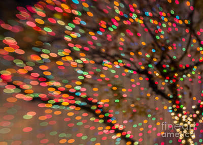 Photograph - Gumdrop Holiday Tree by Marianne Jensen