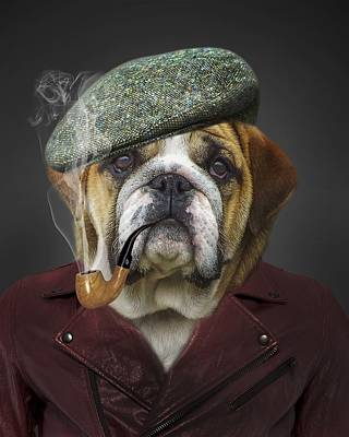 Funny Dog Digital Art - Gus by Cco