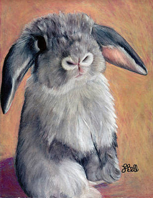 Painting - Gus by Laura Bell