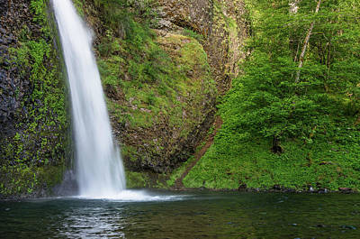 Photograph - Gushing Horsetail Falls by Greg Nyquist