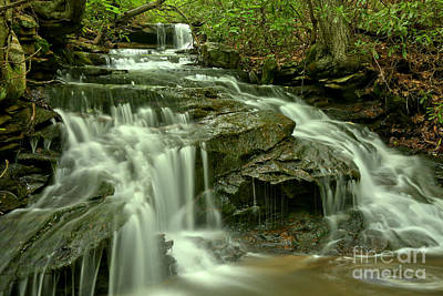Photograph - Gushing Through Forbes State Forest by Adam Jewell