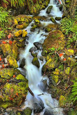 Photograph - Gushing Through The Rocks by Adam Jewell