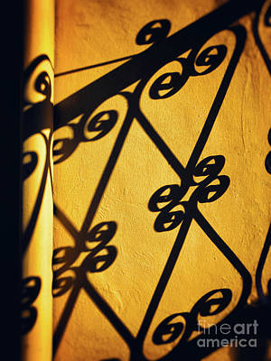 Art Print featuring the photograph Gutter And Ornate Shadows by Silvia Ganora