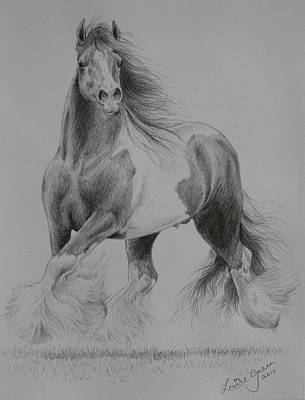 Pinto Drawing - Gypsy Cob by Louise Green