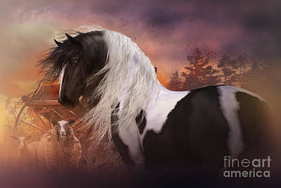 Gypsy Vanner Horse Digital Art - Gypsy On The Farm by Shanina Conway