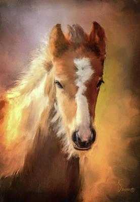 Dipper Digital Art - Gypsy Vanner Foal by Kimberly Stevens