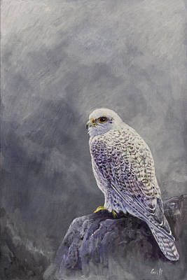 Gyr Falcon Painting - Gyr Falcon by Ian Griffiths