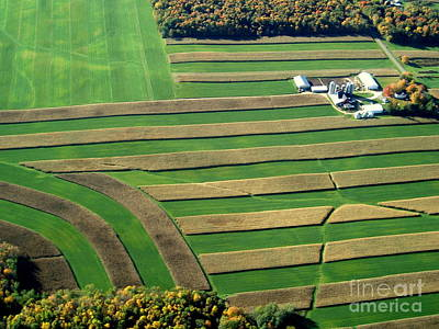 Photograph - H-011 Harvest Field by Bill Lang