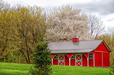 Tree Photograph - H D R Red Barn by Aimee L Maher Photography and Art Visit ALMGallerydotcom