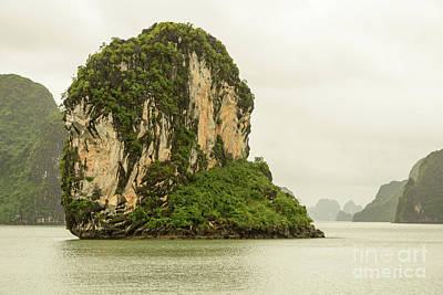 Photograph - Ha Long Bay 1 by Werner Padarin