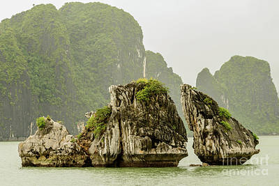 Photograph - Ha Long Bay 2 by Werner Padarin