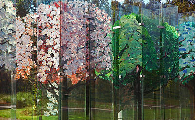 Photograph - Haaksbergen's Het Glazen Bos by Ginger Wakem
