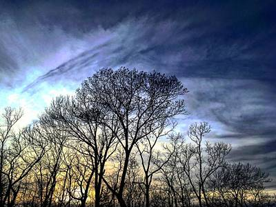 Photograph - Haarp Sunset Parallels The Trees by Michael Oceanofwisdom Bidwell