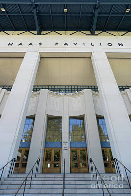 Photograph - Haas Pavilion At University Of California Berkeley Dsc6304 by San Francisco Art and Photography