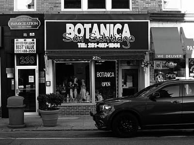 Photograph - Hackensack, Nj -  Botanica Bw 2018 by Frank Romeo