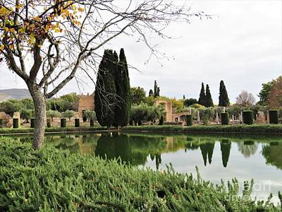 Photograph - Hadrian's Villa 1 by Laurie Morgan