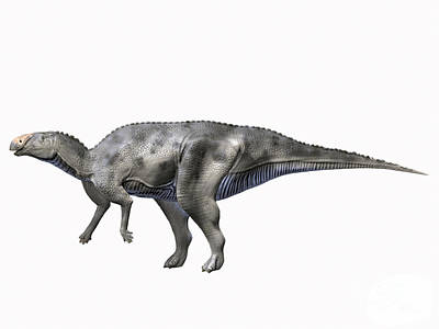 Prehistoric Digital Art - Hadrosaurus Foulkii, Late Cretaceous by Nobumichi Tamara