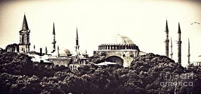 Hagia Sophia Panorama Sepia Art Print by Sarah Loft