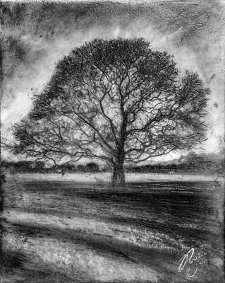 Mixed Media - Hagley Tree 2 by Roseanne Jones