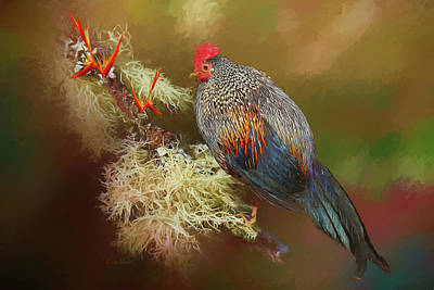 Photograph - Hahn Rooster-painted by Ericamaxine Price