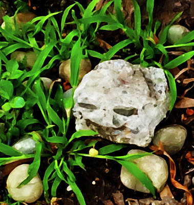 Photograph - Haight Ashbury Smiling Rock by Gina O'Brien