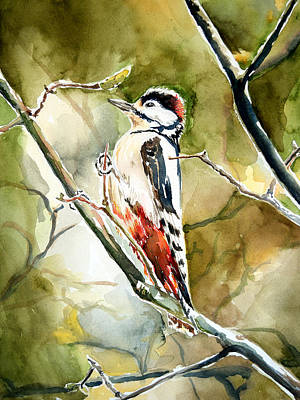 Hairy Woodpecker Original by Anna  Katherine