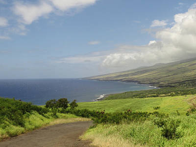 Photograph - Haleakala's Dry Slope, East Maui by Feva Fotos