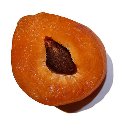 Photograph - Half An Apricot by Stan  Magnan