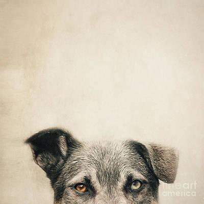 Half Dog Art Print by Priska Wettstein
