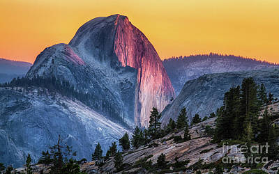 Photograph - Half Dome Sunset by Anthony Michael Bonafede