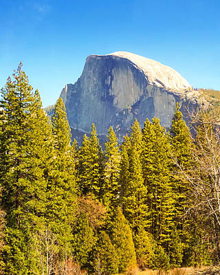 Photograph - Half Dome by Lutz Baar