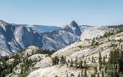Photograph - Half Dome by Sharon Seaward
