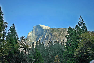 Half Dome Through The Trees 1 Ahwahnee Drive Yosemite National Park Ca Art Print by Duncan Pearson