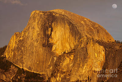 Photograph - Half Dome With Full Moon by Max Allen
