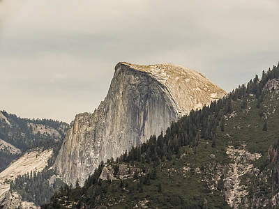 Half Dome Yosemite Valley Yosemite National Park Art Print