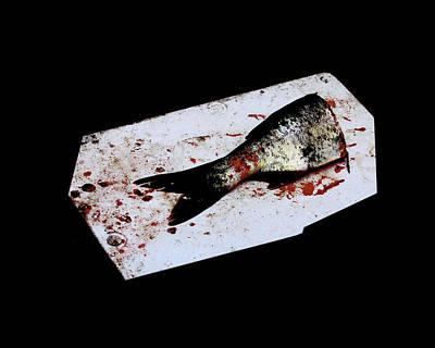 Half Fish Art Print by Tianxin Zheng
