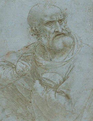 Drawing - Half-length Figure Of An Apostle by Leonardo da Vinci