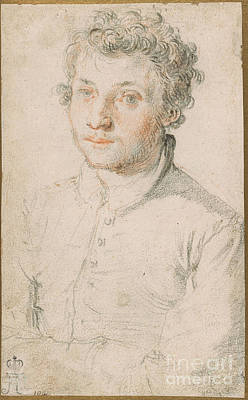 Men Painting - Half-length Portrait Of A Young Man by Celestial Images