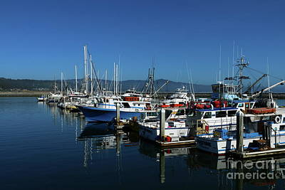 Photograph - Half Moon Bay Harbor Scene by Christiane Schulze Art And Photography