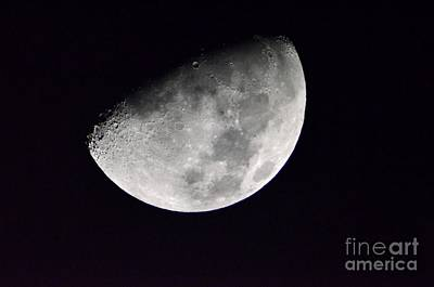 Photograph - Half Moon by Christopher Shellhammer