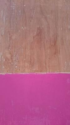Half Pink Half Wood Print by Helene Smith