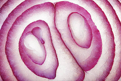 High Angle View Photograph - Half Red Onion Macro by Johan Swanepoel