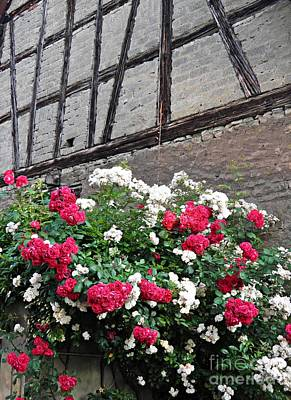 Photograph - Half Timbers And Roses 2 by Sarah Loft