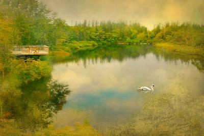 Photograph - Dreams Of Nova Scotia by Diana Angstadt