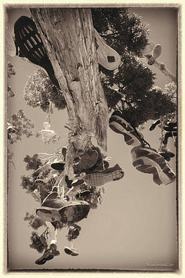Photograph - Hallelujah Junction Hanging Soul Tree by LeeAnn McLaneGoetz McLaneGoetzStudioLLCcom