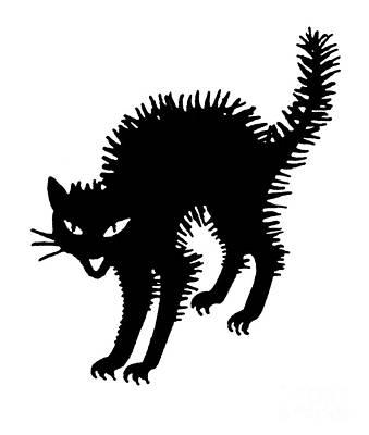 Photograph - Halloween: Black Cat by Granger